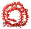 Alghero capitale del corallo rosso sin dal Seicento
